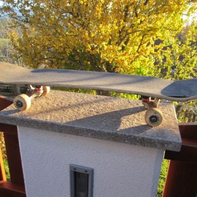 Skateboard - Normalgröße - thumb