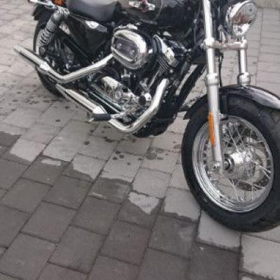 Harley Davidson - thumb