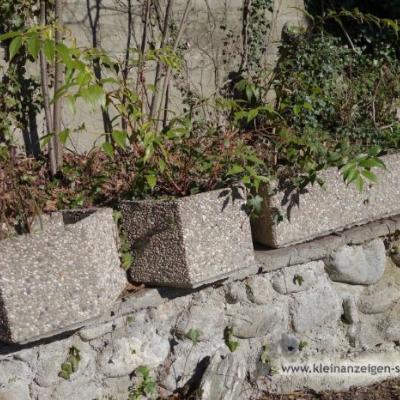 GRATIS Waschbeton-Tröge für Bepflanzung im Freien - thumb