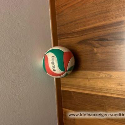 Volleyball der Marke Molten - thumb