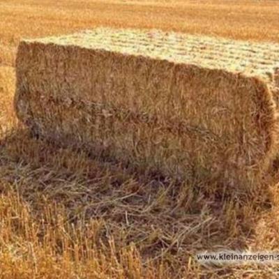 Stroh Weizenstroh Einstreu 15€/dt - thumb