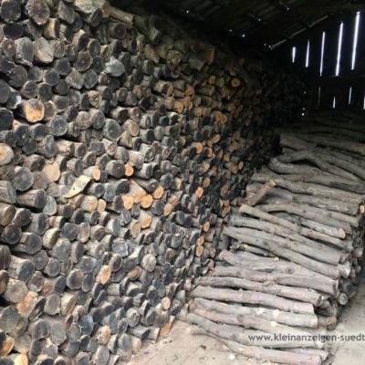 Verkaufe Holz vom BIO Apfelbaum - thumb