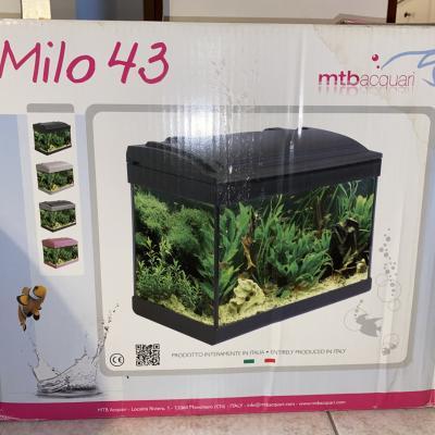 Aquarium Milo 43 - thumb