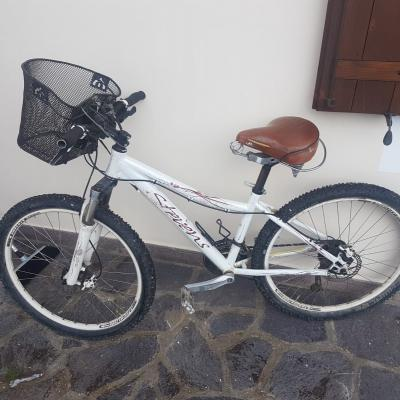 Fahrrad Damen zu verkaufen - thumb