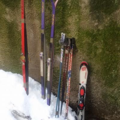 Vier Paar Ski abzugeben - thumb
