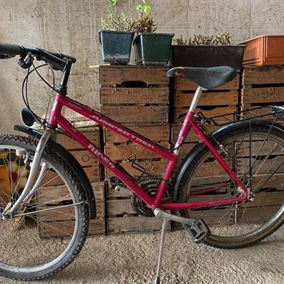 Damen Mountainbike - thumb