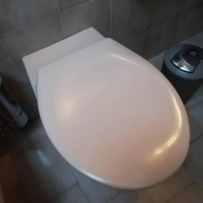 WC MIT DECKEL - thumb