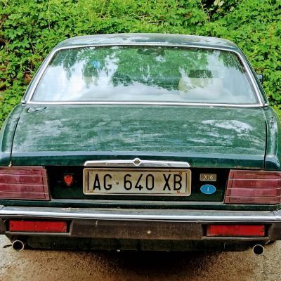 Oldtimer Jaguar - thumb