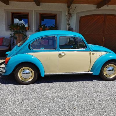 Volkswagen Käfer - thumb