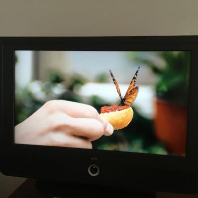 Loewe TV (sehr guter Zustand) - thumb