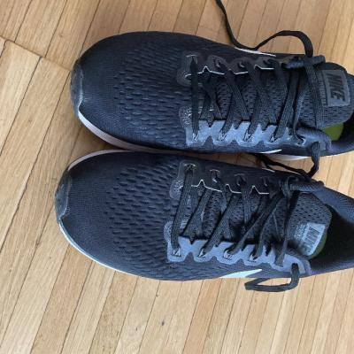 Nike Pegasus - thumb