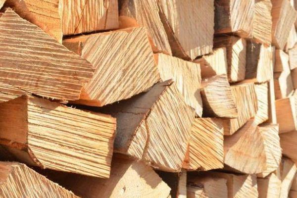 Jetzt trockenes Brennholz kaufen!