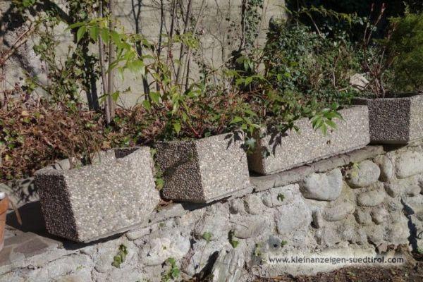 GRATIS Waschbeton-Tröge für Bepflanzung im Freien