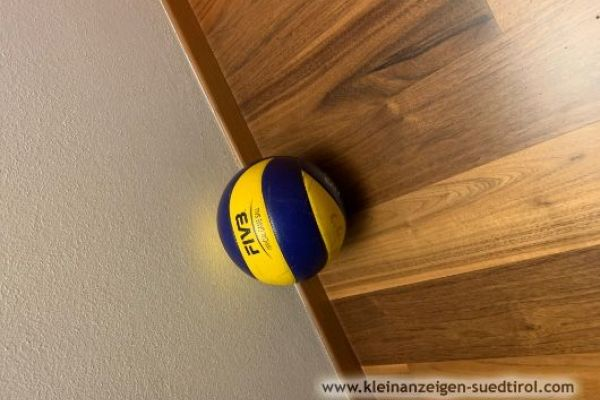 Volleyball der Marke fivb