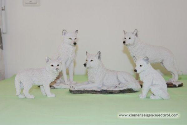 Wölfe/Wolfsfamilie im Set