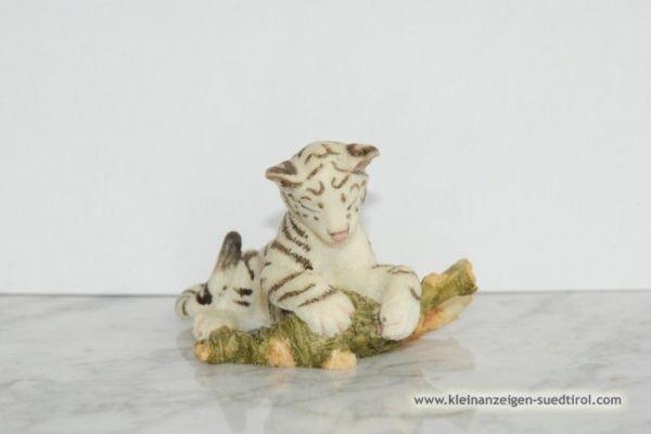 Kleiner schlafender weißer Tiger