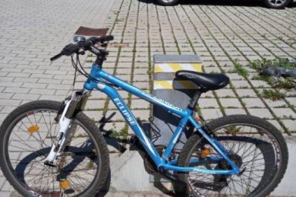 Bicicletta ragazzo 11-14 anni