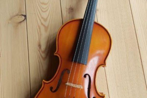 Geige (halbe) für Anfänger