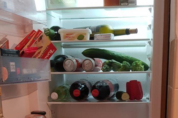 Einbau Kühlschrank