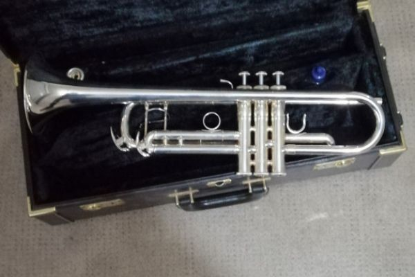 Silberne Trompete