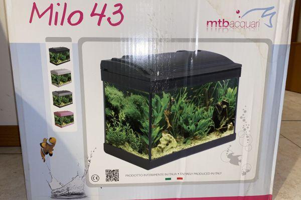 Aquarium Milo 43