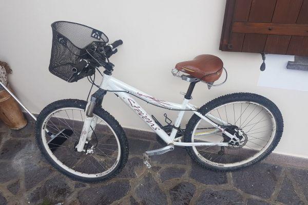 Fahrrad Damen zu verkaufen