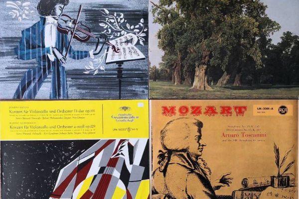 Schallplatten - LPs - über 100 Stück