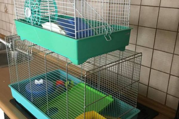 2 Hamsterkäfige