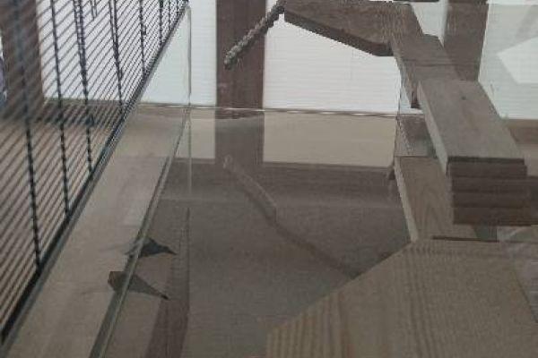 Großes Terrarium für Hamster oder kleines Nagetier