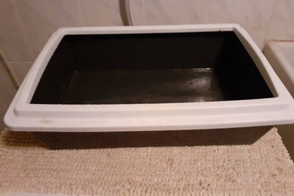Katzenbox Plastik