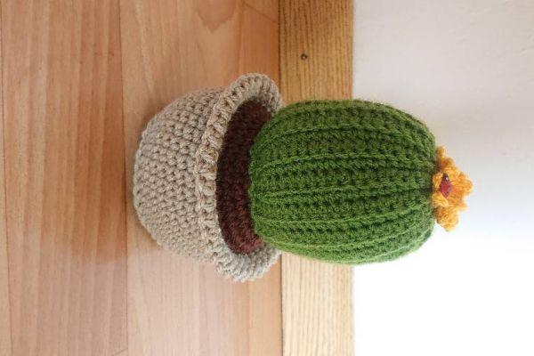 Mit ♥️ gehäkelte Kaktus