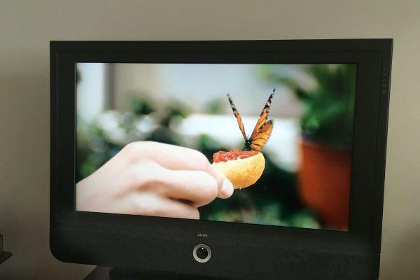 LOEWE TV (sehr guter Zustand)