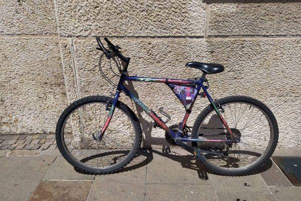 Mountainbike 26 Zoll / pollice 26