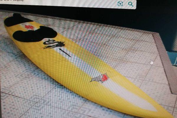 Surfbrett F2