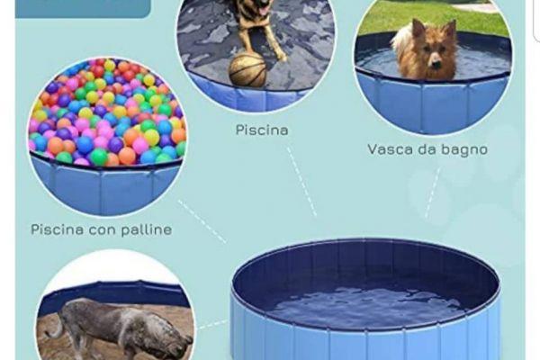Schwimmbad für Hund