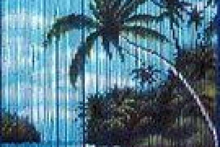 Türvorhang aus Bambus - Bild 1