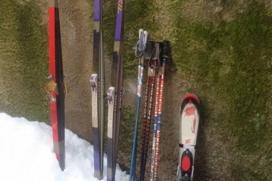 Vier Paar Ski abzugeben - Bild 1