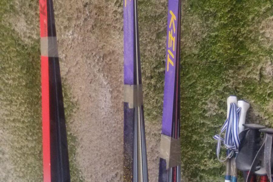 Vier Paar Ski abzugeben - Bild 2