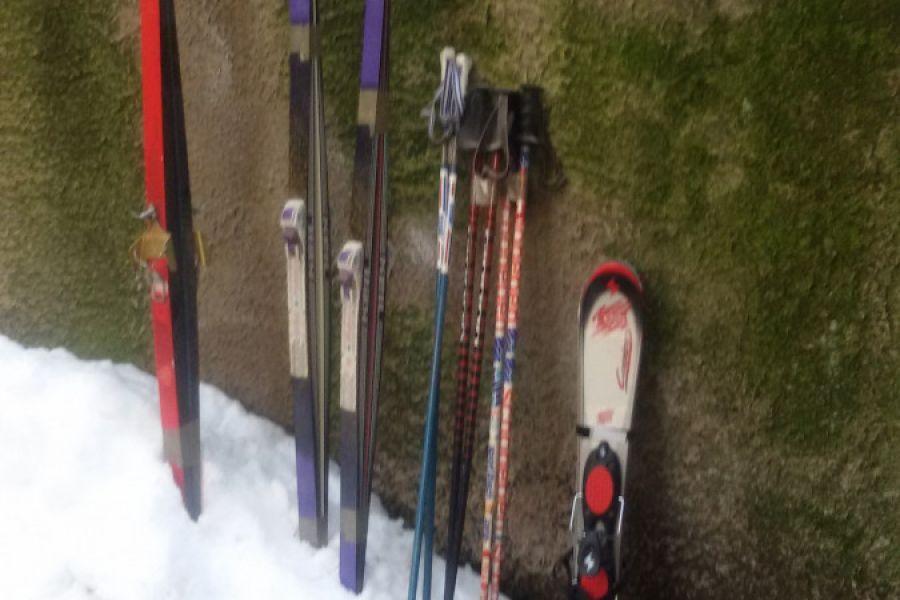 Vier Paar Ski abzugeben - Bild 4